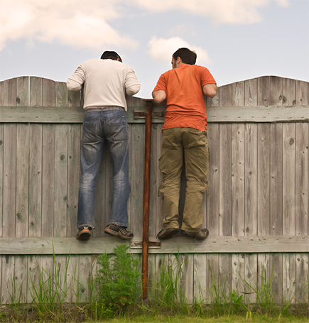two men peeping over the fence